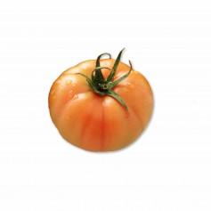Tomate Pinton - 1 Unidad - Aprox 250g